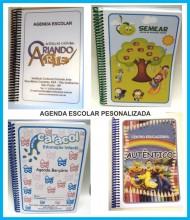 Agenda escolar 20x15 cm
